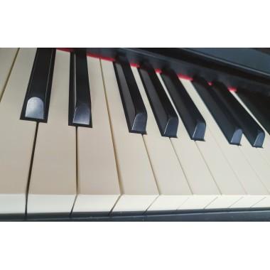 Hallelujah (Leonard Cohen) - fortepian mp3